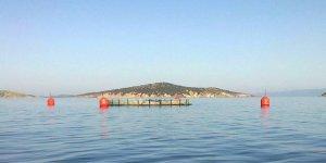 Azerbaycan'da, balık çiftlikleri özelleştirilecek