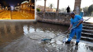 Tarihi Balıklıgöl'deki temizlik çalışması devam ediyor