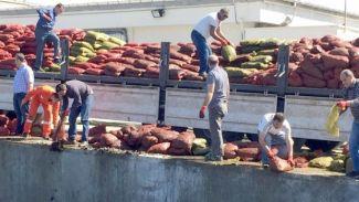 24 ton kaçak midye ele geçirildi