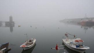 Zonguldak'ta yoğun sis deniz ulaşımını etkiledi