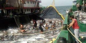 Balıkçılar rotayıMoritanya'ya çevirdi