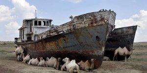 Bir zamanlar 'Aral' diye bir göl vardı