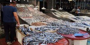 Türkiye'de balık tüketimi dünya ortalamasının altında