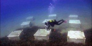 Marmaris'te deniz çayırları çiftliği kurma projesi başladı