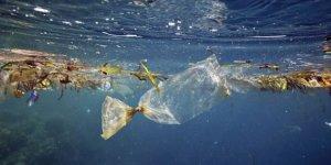 Dünyanın en derin noktasında bile plastik var