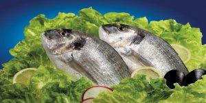 Türk balıkları hava kargo ile İsrail'e uçuyor