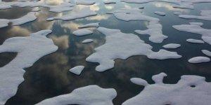 Arktik'te 16 yıl boyunca balık avlamak yasak