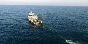 Deniz sıcaklığı balık göçlerinin takvimini değiştirdi