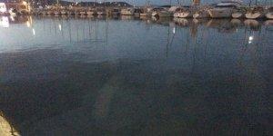 Urla'da 1 ton mazot denize aktı, liman kapatıldı