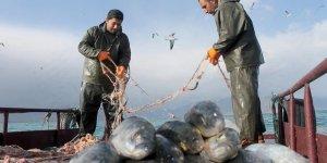 Van Gölü'nde av yasağı sona erdi