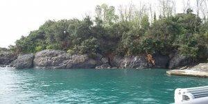 Amazonlar diyarı Giresun Adası (Aretias)