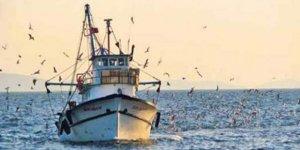 Sonunda Karadeniz'de balık tükendi