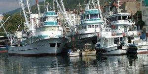 Balıktan umutlarını kesip, karides avına başladılar