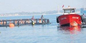 Mersin'deki balık çiftlikleri Dana adasına taşındı