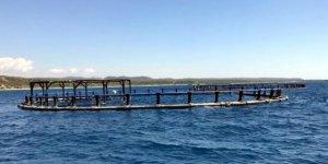 Mersin'in gündemi balık çiftlikleri