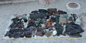 Balinanın midesinden 29 kilo plastik poşet çıktı