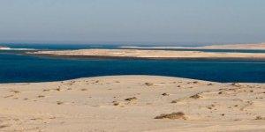 """Suudi Arabistan, """"Selva Kanalı"""" için harekete geçti"""