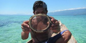Evrimin böylesi: Deniz insanları ortaya çıktı!