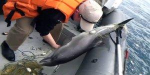 Rusya'dan Ukrayna balıkçı gemisine baskın