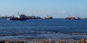Kaçak avcılar KKTC sularını mesken tuttu