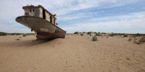Aral Gölü 150 yıl sonra orman olacak