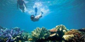 Büyük Set Resifi için artık çok geç