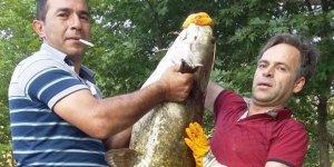 Suya attığı oltasına 50 kiloluk balık takıldı