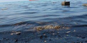 Denizi kirleten kömürcülere ceza