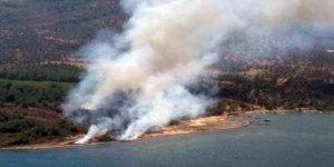 Cunda Adası'nda orman yangını!