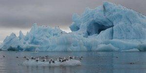 A-68 buz dağı kontrolden çıktı