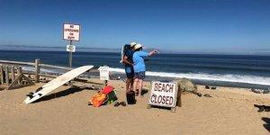 ABD'de köpekbalığı saldırısında bir kişi öldü