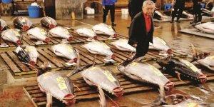Dünyanın en büyük balık pazarı taşındı