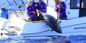 Tuna Masters Alaçatı'nın galibi belli oldu