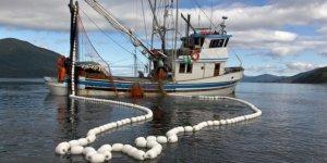 Su Ürünleri Kanunu, bölgesel balıkçılığı getiriyor