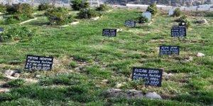 Mültecilerin defnedildiği yer: 412 numaralı ada
