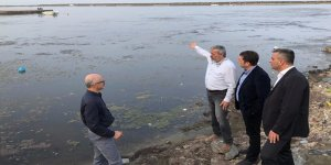 Kurupelit Yat Limanı'nda ekolojik bozulma