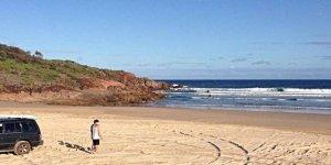 Köpekbalığı yüzünden plajlar kapatıldı