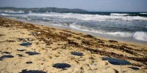 Fransa sahilleri akaryakıta bulandı