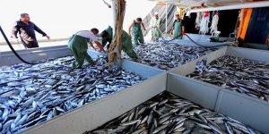 En çok balığı Karadenizliler tüketiyor