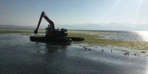 İzmir Körfezi'nde yosun temizleme çalışması