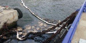 İzmit Körfezi'nde deniz kirliliği