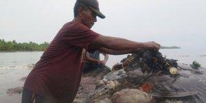 Ölü balinanın midesinden 6 kilo çöp çıktı