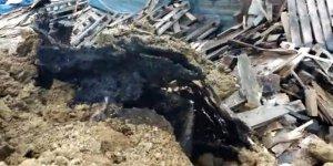 Tuzla'da kimyasal atık alarmı!