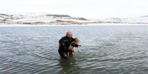 Buzları kırıp donmak üzere olan köpeği kurtardı