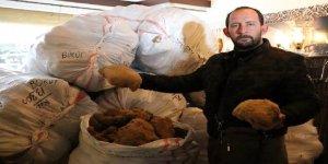 Yunanistan'a sünger ihracatı yeniden başladı