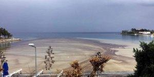 Datça'da denize sızan yakıt yayıldı