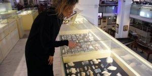 460 milyon yıllık deniz kabuğu fosili