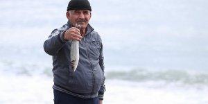 """Balıkçılar """"Firari levrekler""""in peşinde"""