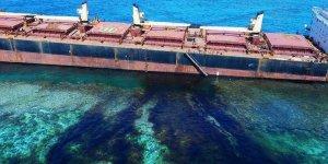 Solomon Adaları çevre felaketi yaşıyor