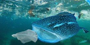 104 milyon ton plastik daha doğaya karışacak
